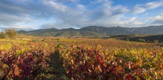 ostatu viñedo sostenibilidad goiener