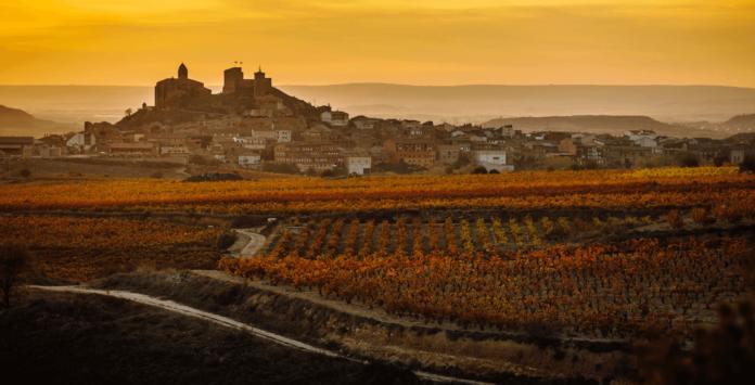 EnoMICE Rioja