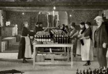 Historia vino