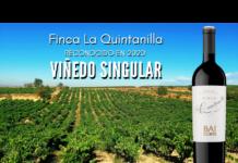 Viñedo Singular